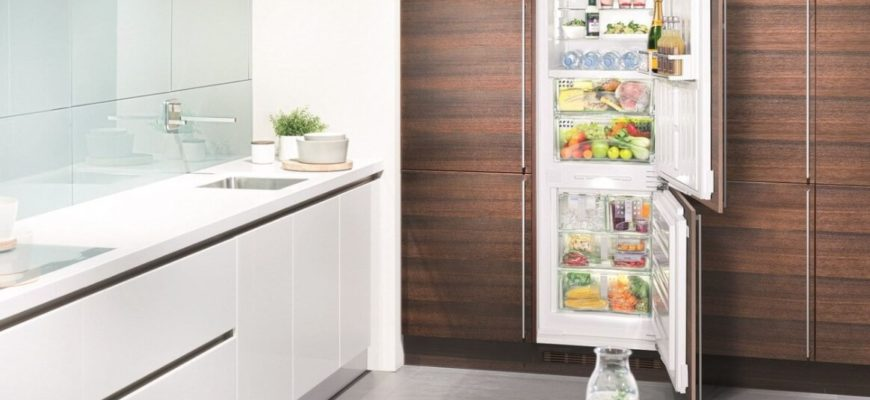 ТОП-5 встроенных холодильников